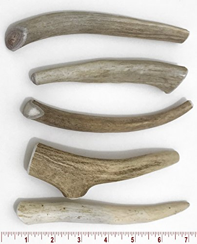 Perfect Pet Chews 5-7'' Medium Deer Antler Dog Chew - 5 ct by Perfect Pet Chews