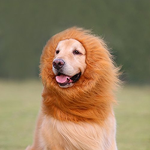 Lion Mane Wig Costume for Dog, Messar Lion Wig Hair for Medium to Large Sized Dog With Ears & Tail Pet Festival Party Fancy Hair Dog Dress Clothes (Brown with ears & tail)]()