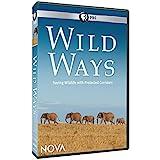 NOVA: WILD WAYS