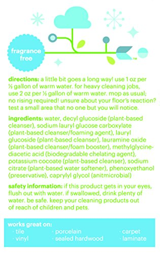 Babyganics Floor Cleaner Concentrate, Fragrance Free, 16-oz (Pack of 2), Packaging May Vary - incensecentral.us