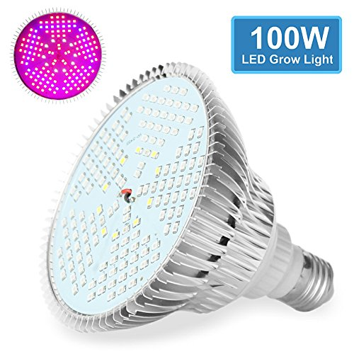 Nasa Led Light Plant - 4