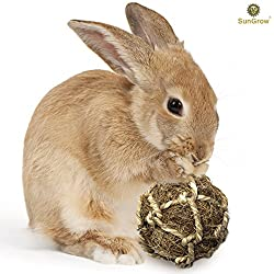 Coconut Fiber Ball for Rabbit by SunGrow - Improves Dental Health - 100% Natural Chew Toy- Provides Hours of Stimulation - Environment Friendly, Stress reliever - Ideal for Bunnny, Chinchilla & Kitten