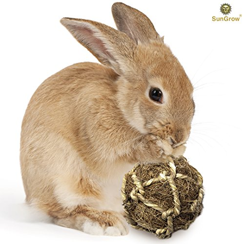 Natural Stress Reliever - SunGrow Coconut Fiber Ball for Rabbit by Improves Dental Health - 100% Natural Chew Toy- Provides Hours of Stimulation - Environment Friendly, Stress reliever - Ideal for Bunnny, Chinchilla & Kitten
