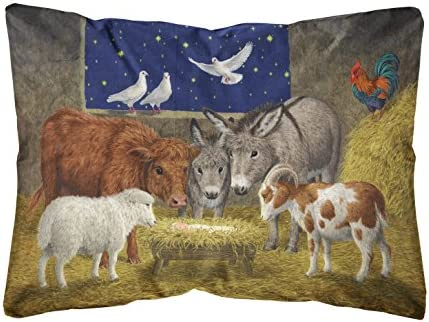 Caroline s Treasures ASA2205PW1216 Animals at Crib Nativity Christmas Scene Fabric Decorative Pillow, 12H x16W, Multicolor