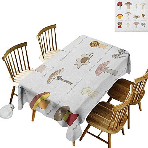 - DONEECKL Mushroom Wrinkle Free Tablecloth Indoor and Outdoor Tablecloth Colorful Fungi Pattern Blusher Boletus Sketch Style Plants Autumn Illustration Multicolor W52 xL70