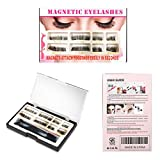 2D and 3D Magnetic Eyelashes [No Glue] Reusable Premium Quality False Eyelashes Set