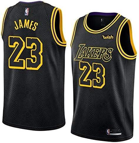 Vipsanius LeBron James #23 LA Lakers