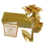 24K-Gold-Dipped-Real-Rose-wGold-Gift-Box-by-The-Original-Forever-Rose-USA-Brand