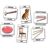 NORTH STAR TEACHER RESOURCE BASIC VOCABULARY LANGUAGE CARDS (Set of 6)