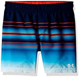 Apparel : Under Armour Big Boys' Swim Shorts, Academy, Small