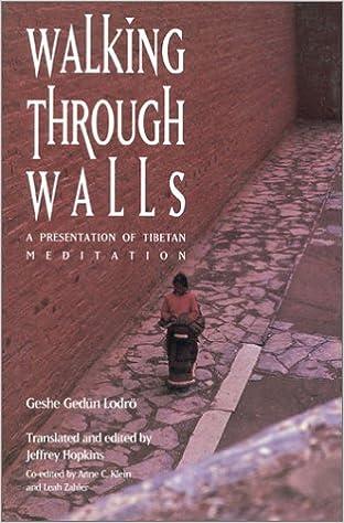 Lodro Walking Through Walls cover art