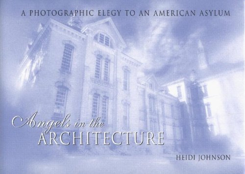 Angels in the Architecture: A Photographic Elegy to an American Asylum (Great Lakes Books)