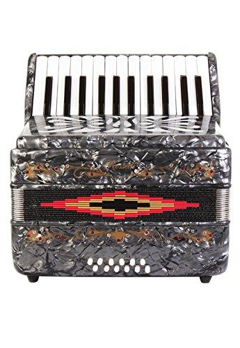 Rossetti Beginner Piano Accordion 12 Bass 25 Keys Grey by Rossetti