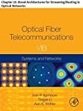 Optical Fiber Telecommunications VIB: Chapter 19. Novel Architectures for Streaming/Routing in Optical Networks (Optics and Photonics)