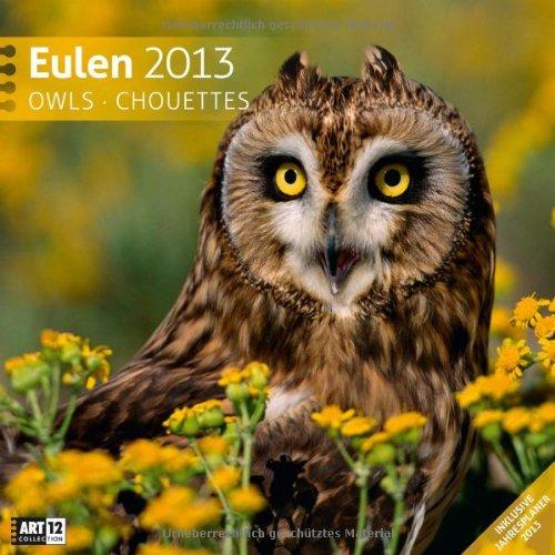 Eulen 2013 Art13 Collection: Broschürenkalender