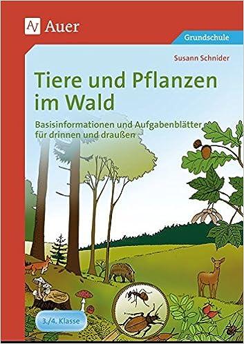 Tiere und Pflanzen im Wald: Basisinformationen und Aufgabenblätter ...