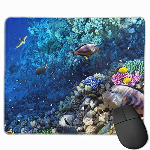 NOAID Non-Slip Mouse Pad Rectangle Rubber Mousepad Monkey with Toy Print Gaming Mouse -