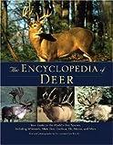 The Encyclopedia of Deer, Leonard Lee Rue, 0896585905
