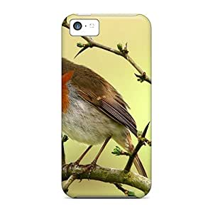 Diycase Awesome Flash-Men Defender Tpu case cover For Iphone 6 plus 5.5''- h3IzCuzFlRC Robin On A Branch