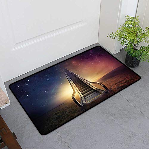 Custom&blanket Inlet Outdoor Door Mat, Surrealistic Decorative Doormats for Bedroom, Escalator Up to Space Galaxy Starry Sky Heaven Planetary Road Theme (Night Blue Dried Rose, H32 x W48)