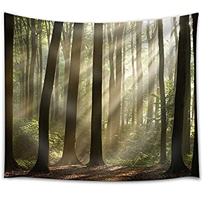 Sun Rays Peeking Through The Forest with Bushes - Fabric Tapestry, Home Decor - 51x60 inches
