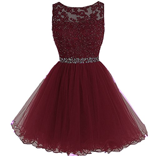 Aiyi Sheer Bateau Beaded Lace Tulle Short Prom Homecoming Dresses Plus Size Burgundy US 20W ()