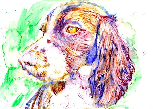 Springer Spaniel Dog Wall Art Print, Springer Spaniel Dog Art, Springer Spaniel Owner Gift, Dog Wall Art Print, Colorful Dog Watercolor Painting Decor