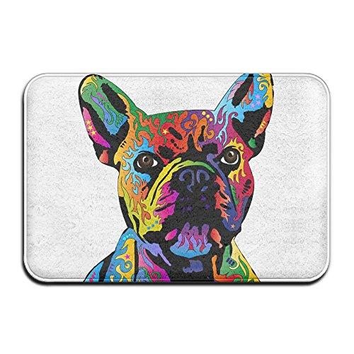 Indoor Welcome Personalized Hello Doormat, Colorful French Bulldog, Indoor Non Slip Front Door Mat Entryway Rug For Home Decor (Hello Bulldog)