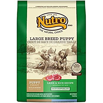 Amazon.com: Nutro Large Breed Dry Puppy Food, Lamb And