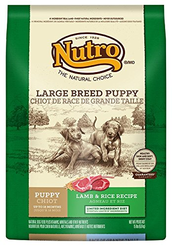 NUTRO Large Breed Dry Puppy Food, Lamb and Brown Rice, 15 lbs.