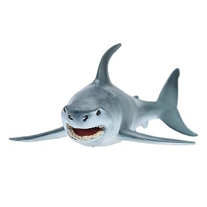 Amazon com: CMrtew ❤ Megalodon Prehistoric Shark Ocean