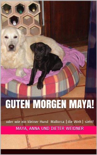 Guten Morgen Maya Oder Wie Ein Kleiner Hund Mallorca Die