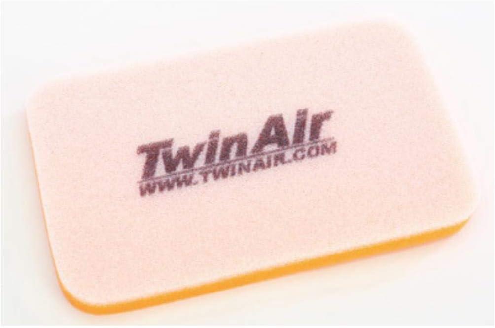 Twin Air Air Filter