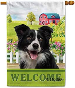 BAGEYOU Welcome A Lovely Dog Border Collie in The Country House Flag for Outside Beautiful Rustic Rural Landscape Red House Flowers Home Decor Banner 28X40 Inch Print Double Sided