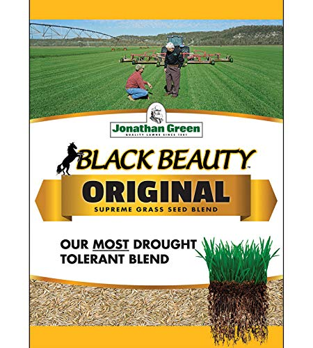 Buy green grass seed