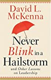 Never Blink in a Hailstorm and Other Lessons on Leadership, David L. McKenna, 0801065402