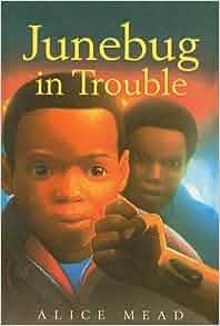 Junebug In Trouble Alice Mead 9780756915377 Amazon Com