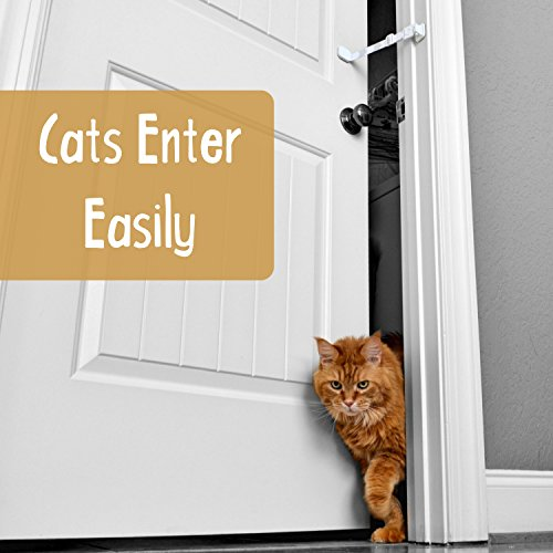 Door-Buddy-Door-Latch-Plus-Door-Stop-Keep-Dog-Out-of-Litter-Box-and-Prevent-Door-from-Closing-Easy-Cat-and-Adult-Entry-Installs-in-Seconds-Perfect-Pet-Gate-and-Cat-Door-Alternative-Grey