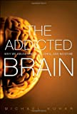 The Addicted Brain, Michael Kuhar and Sylvia Wrobel, 0132542501