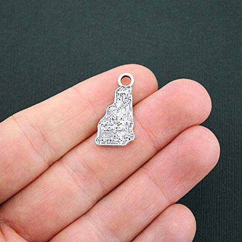 Pendant Jewelry Making for Bracelets and Chains 8 New Hampshire State Charms Antique Silver Tone - SC4761