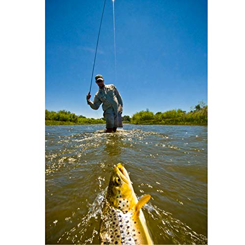 0X-6X 7.5ft//9ft//12ft//15ft Maxcatch Fly Fishing Tapered Leader with Loop 6 Pack