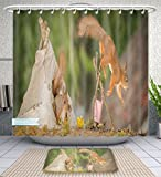 Unique Custom Bathroom 2-Piece Set Young Red Squirrel In A Tee Pee With A Fire Place With Older Squirrel Jumping Of With Blurry Feet Shower Curtains And Bath Mats Set, 79''Wx71''H & 31''Wx20''H