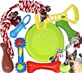 Jalousie Chew Toy Natural Rubber chew Toy for Interactive Play Toy Ball Rope Rubber Value Set for Small to Medium Breed Dog mutt Puppy
