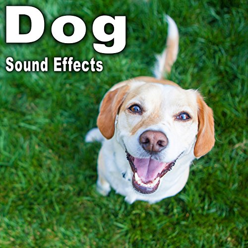 - Dog Sound Effects