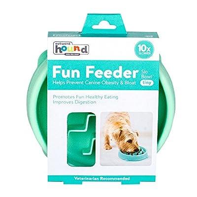 Outward Hound Fun Feeder Slo-Bowl Healthy Slow Feeding Dog Bowl, X-Small, Mint by Kyjen