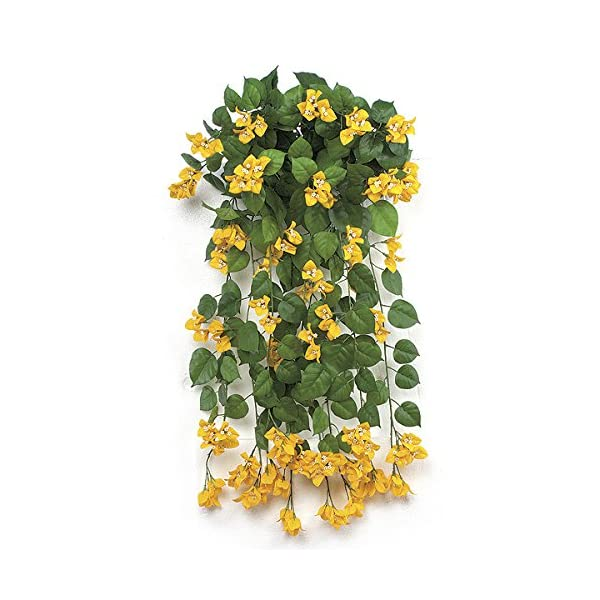 SilksAreForever 36″ IFR Artificial Hanging Bougainvillea Flower Bush -Yellow (Pack of 2)