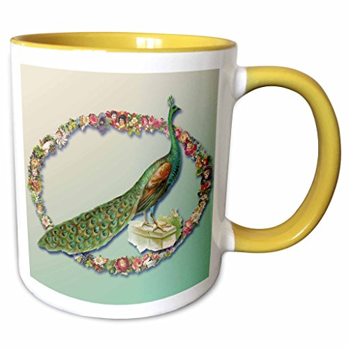 3dRose BLN Vintage Bird Illustrations Collection - Victorian Peacock with a Flower Frame on a Gradient Background - 15oz Two-Tone Yellow Mug (mug_170636_13)