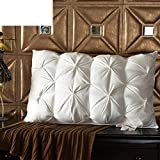 Pillow interior /[pillow]/hotel pillows/pillowcase-A 48x74cm(19x29inch)