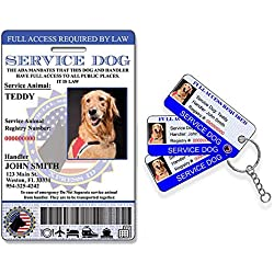 Holographic Service Dog ID + 3 Key Tags | Includes Registration to National Dog Registry