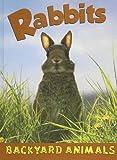 Rabbits, Annalise Bekkering, 1590366794
